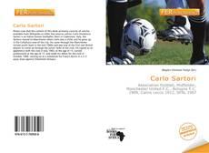 Portada del libro de Carlo Sartori