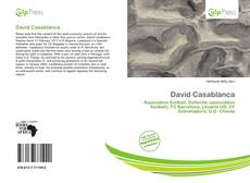Bookcover of David Casablanca