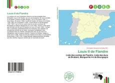 Bookcover of Louis II de Flandre