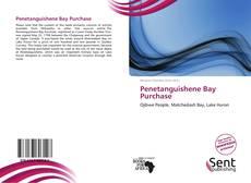 Buchcover von Penetanguishene Bay Purchase
