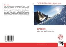Capa do livro de Ostspitze