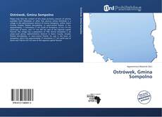 Ostrówek, Gmina Sompolno的封面