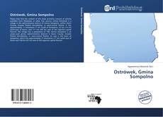 Capa do livro de Ostrówek, Gmina Sompolno