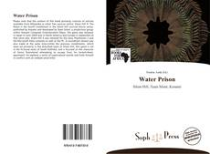 Bookcover of Water Prison