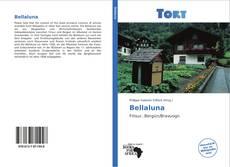 Couverture de Bellaluna