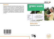 Bookcover of Bellandris