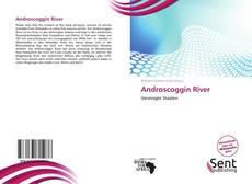 Copertina di Androscoggin River