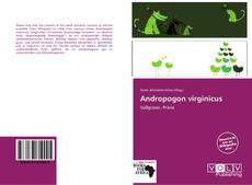 Bookcover of Andropogon virginicus