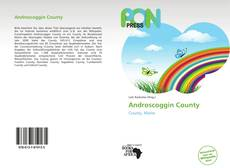 Bookcover of Androscoggin County