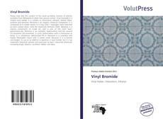 Vinyl Bromide的封面