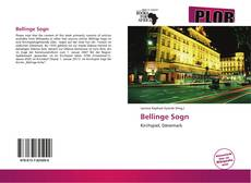 Bookcover of Bellinge Sogn