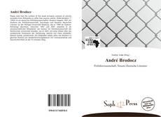 Capa do livro de André Brodocz