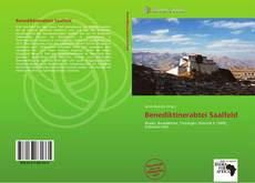 Portada del libro de Benediktinerabtei Saalfeld