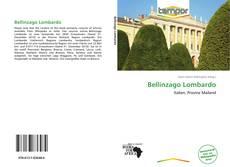 Copertina di Bellinzago Lombardo