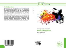 Bookcover of André Boisclair