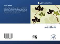 Capa do livro de André Chastel