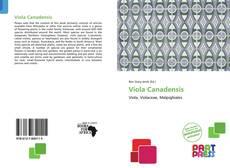 Viola Canadensis的封面