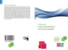 Bookcover of Viola Labradorica