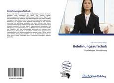 Bookcover of Belohnungsaufschub