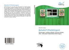 Capa do livro de Belsdorf (Flechtingen)