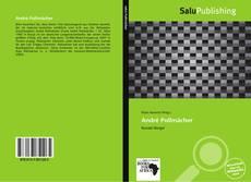 Buchcover von André Pollmächer