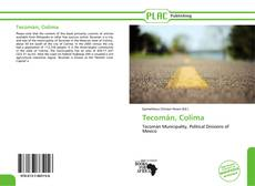 Portada del libro de Tecomán, Colima