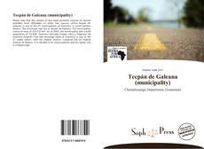Tecpán de Galeana (municipality) kitap kapağı