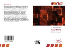 Bookcover of Anes Krivic