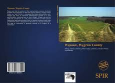 Portada del libro de Wąsosze, Węgrów County