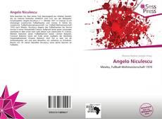 Buchcover von Angelo Niculescu