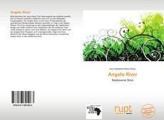 Buchcover von Angelo River