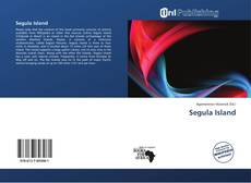 Bookcover of Segula Island