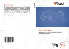 Buchcover von Beringbrücke