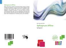 Borítókép a  Sphagnum Affine - hoz