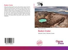 Bookcover of Roden Crater