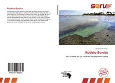 Bookcover of Rodeio Bonito