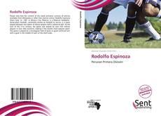 Portada del libro de Rodolfo Espinoza