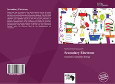 Couverture de Secondary Electrons