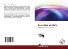 Borítókép a  Secondary Mandate - hoz