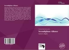 Capa do livro de Secondigliano Alliance