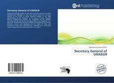 Bookcover of Secretary General of UNASUR