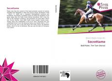 Bookcover of Secrettame