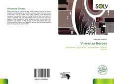 Bookcover of Vincenza Gerosa