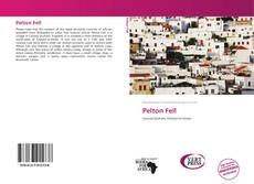 Bookcover of Pelton Fell