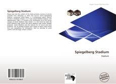 Buchcover von Spiegelberg Stadium