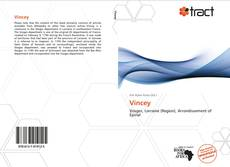 Bookcover of Vincey