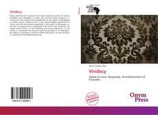 Vindecy的封面