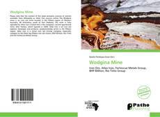 Bookcover of Wodgina Mine