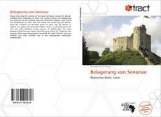 Belagerung von Senonae的封面