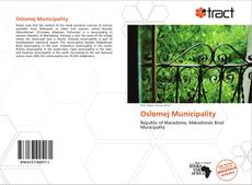 Bookcover of Oslomej Municipality